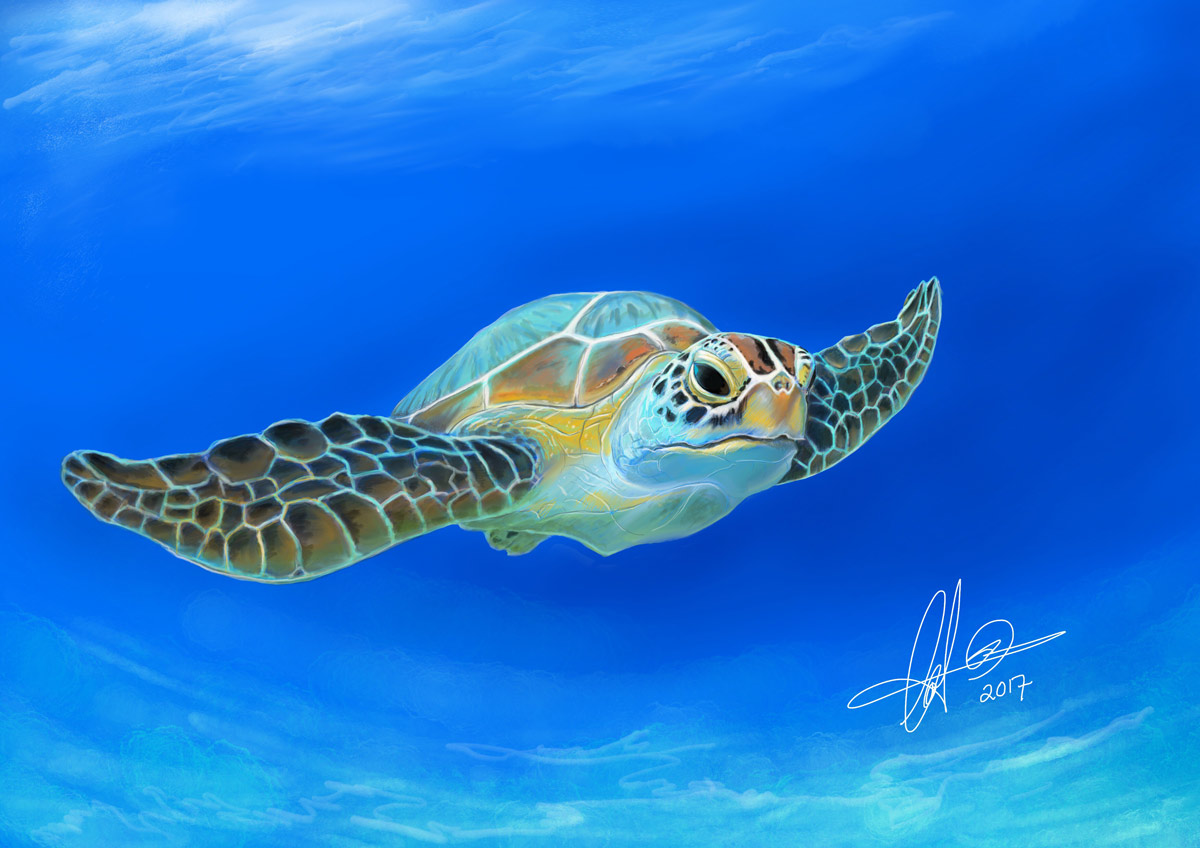 Baby sea turtle. Digital art.